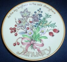 Davenport Limited Edition JANUARY Collectors Plate Edith Holden