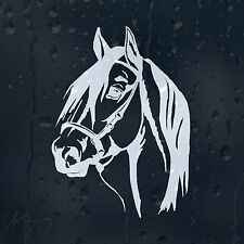 Horse Car Decal Vinyl Sticker For Window Or Panel Bumper