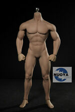 Phicen PL2015-M30 Male Muscular Body 1/6 Hot Flexible Seamless Stainless Toys