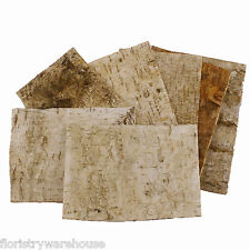 Birch Tree Bark Sheets, Bundle of 7, 24 x 17cm (9.5 x 6.5 inches)