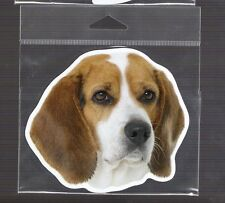 Beagle  4 inch face magnet for anything metal