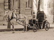 Vintage photo ancienne antique cheval transport conducteur piège Rétro Poster Print bmp10217