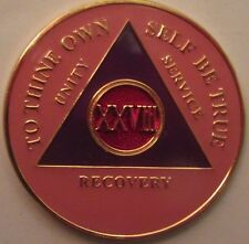 Pink Alcoholics Anonymous 28 Year AA Medallion Coin Token Chip Sobriety Sober