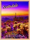 Scottsdale Arizona United States of America Travel Advertisement Art Poster