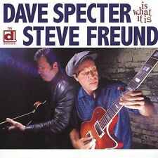 Is What It Is by Dave Specter/Steve Freund (CD, Nov-2004, Delmark (Label))