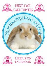 ND4 Cute Bunny Rabbit birthday personalised round cake topper icing