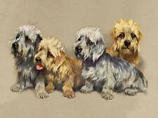 DANDIE DINMONT TERRIER LOVELY GROUP OF DOGS CHARMING DOG GREETINGS NOTE CARD