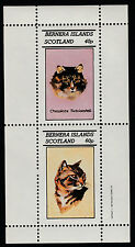 GB Locals - Bernera (1073) 1982 DOMESTIC CATS perf sheetlet unmounted mint