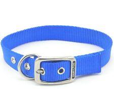 """HAMILTON ST Nylon Dog Collar, 18"""" x 1"""", Blue"""