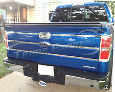 2009-2014 Ford F-150 Pickup Tailgate Insert Trim Molding Indent Cover Accent 6pc