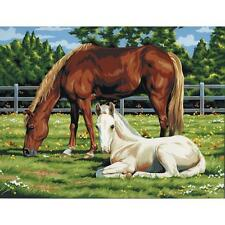 "HORSES IN FIELD Acrylic Paint By Number Kit Artist Canvas Series 11""X14"""