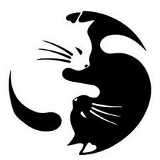 Sleeping Yin&Yang Cat Pet Lover Car Sticker Truck Window Bumper Door Vinyl Decal