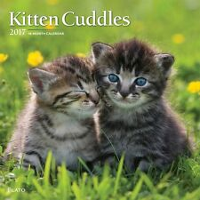 Kitten Cuddles Wall Calendar