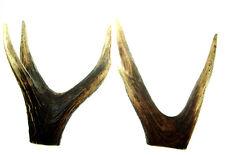 Lot Natural  Deer Elk Antler Gun Knife Sword Dagger Door Handle Pistol Nr4299