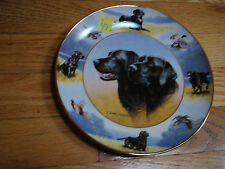 Royal Doulton Porcelain Plate 2 Black Labradors The Sporting Life by Nigel Hemin