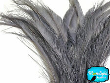 5 Pieces - SILVER GREY BLEACHED Peacock Swords Cut Feathers