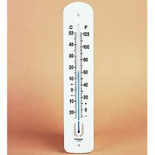 Easy-To-Read Plastic Thermometer For Schools