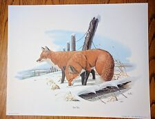 Vintage Wildlife Eaton Veterinary Prints by Don Balke Red Fox 1977 Printed USA