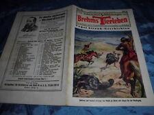 ...Schilderungen aus Brehms Tierleben , Nr. 13 , Original Heft ! , illustriert