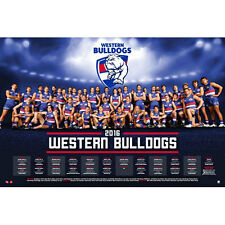 AFL - 2016 Team Posters Western Bulldogs POSTER 61x91cm NEW * Footy