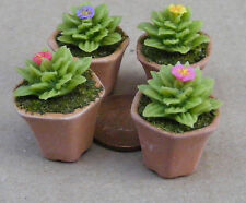1:12 Single Clay Cactus & Pot Dolls House Miniature Flower Garden Accessory T4
