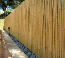 HAND CRAFTED BAMBOO FENCE, FENCING, SCREEN - 2M x 1M - MANUFACTURER DIRECT