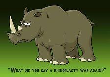 Magnet Animals Rhinoceros Rhino What did you say a rhinoplasty was again