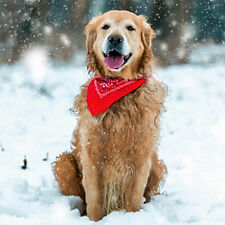 Golden Retriever in Snow Charity Christmas Cards Pack of 5 Dog Xmas Cards