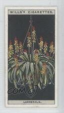 1925 Wills Flower Culture in Pots Tobacco Base 30 Lachenalia Non-Sports Card 1s8