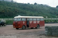 CIE CIE HB56 Rosslare Harbour 1983 Irish Bus Photo