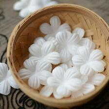 100pcs White Flower Patch Lace Edge Trim Applique Motif Wedding Dress Sewing DIY