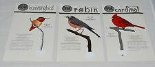 Beak Wild Birds Metal Stakes Potted Plant Decor Robin Cardinal Hummingbird S/3