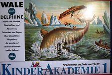 Kinderakademie Nr. 1 - Wale und Delophine - Karin Arndt Verlag