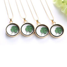 Fashion Real Dried Clover Flower Clear Resin Locket Pendant Necklace Four-Leaf