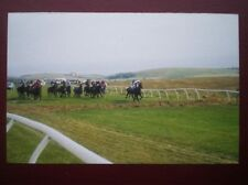 POSTCARD B5 SUSSEX BRIGHTON RACES - HORSES GALLOPING ALONG