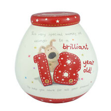 Boofle Brilliant 18 Year Old 18th Birthday Pots Of Dreams Money Pot Saving Gift