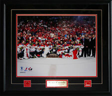 Team Canada 2010 Men's Hockey Gold Medal 16x20 Frame
