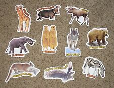 Teacher Resource: 10 National Geographic Animal Bulletin Board Accents - NEW