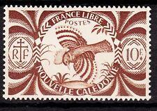 NOUVELLE CALEDONIE  TIMBRE COLONIE  FRANCE NEUF  N° 242 * SERIE DE LONDRE CAGOU