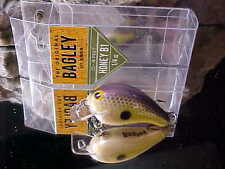 Bagley Legendary Action Balsa HONEY B HB1-SS in SEXY SHAD Ultralight Fishing