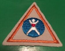 Girl Scout Retired Brownie My Body Try it badges