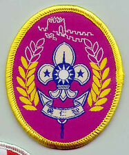 Extinct SCOUTS OF CHINA (TAIWAN) - GREAT WALL SCOUT Highest Rank Top Award Badge