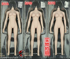 12'' Phicen Pale Seamless Female Body Fit Most 1:6 Scale Head S04B W Large Bust