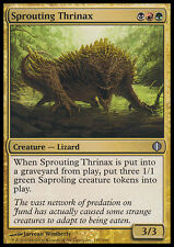 MTG SPROUTING THRINAX EXC - THRINAX DEI GERMOGLI - ALA