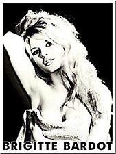 Aimant Réfrigérateur Acier Brigitte Bardot (Na)
