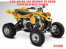INVISION DEKOR KIT ATV CAN-AM RENEGADE, DS250, DS450, DS650 GRAPHIC KIT NITRO B