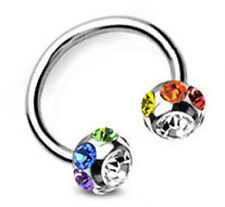 Pride Shack -Rainbow Multi Gem Horseshoe Gay Lesbian Nipple Eyebrow Body Jewelry