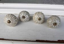 SEA URCHIN STYLE  Drawer Pull Knob ~ Dresser Nautical Coastal Beach Creamy Gray