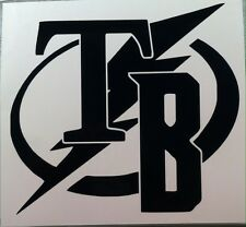 BUCCANEERS, RAYS, LIGHTNING multi team logo decal