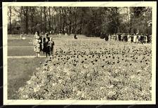 Stuttgart-Park-Killesberg-Rosensteinpark-Schlossgarten-Wilhelma-1940-14